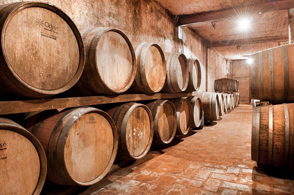 vinicolas-canelones-uruguai-um-cafe-pra-dois-09